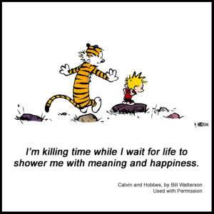calvin-and-hobbes-meaning-and-happiness